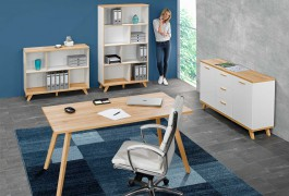 Büro blau Model