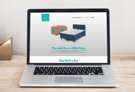 bed in a box Website